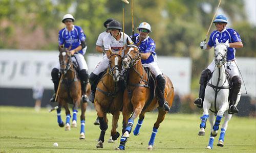 cheval polo